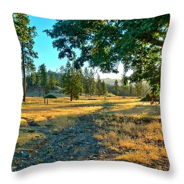 Cool Hazy Sunrise Throw Pillow