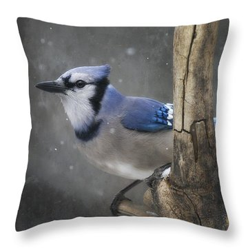 Cool In Blue Throw Pillow