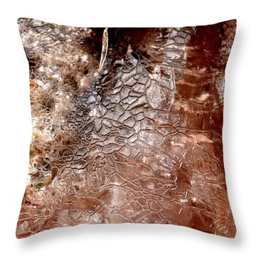 Cool Patterns Throw Pillow by Carlee Ojeda