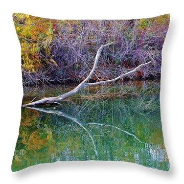 Cool Reflections Throw Pillow