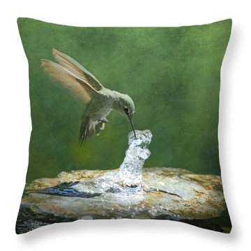 Cool Refreshment Throw Pillow by Angie Vogel