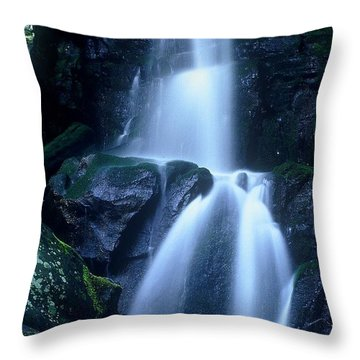 Throw Pillow featuring the photograph Cool Sanctuary by Rodney Lee Williams
