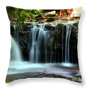 Cool Spring Throw Pillow by Melissa Petrey