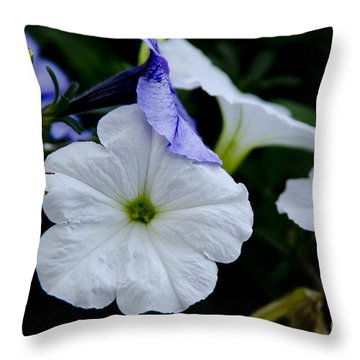 Cool Summer Petunias Throw Pillow by Wilma  Birdwell