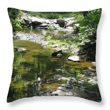 Throw Pillow featuring the photograph Cool Waters by Ellen Levinson