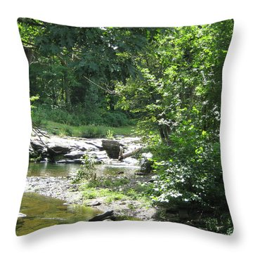 Throw Pillow featuring the photograph Cool Waters II by Ellen Levinson