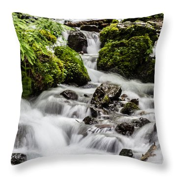 Throw Pillow featuring the photograph Cool Waters by Suzanne Luft
