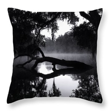 Coolness And Fog On The Withlacoochee River Throw Pillow by Warren Thompson