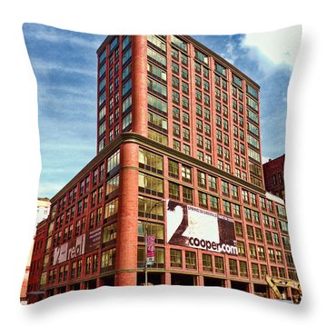 Cooper Exterior Throw Pillow by Steve Sahm