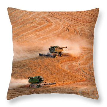 Cooperation Throw Pillow by Mary Jo Allen