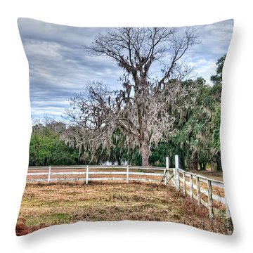 Coosaw - Cloudy Day Throw Pillow by Scott Hansen