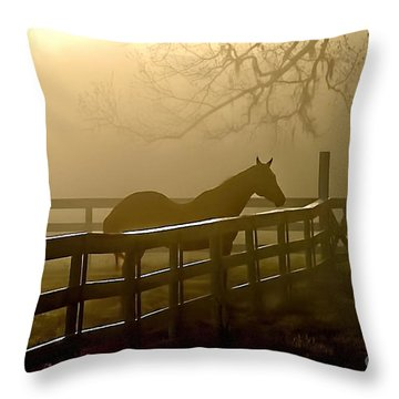 Coosaw Early Morning Mist Throw Pillow
