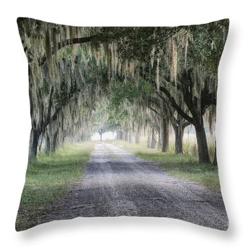 Coosaw Fog Avenue Of Oaks Throw Pillow