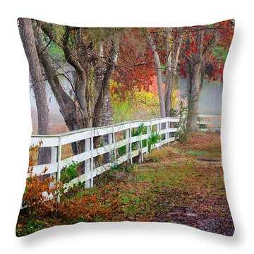 Coosaw Horse Fence Throw Pillow
