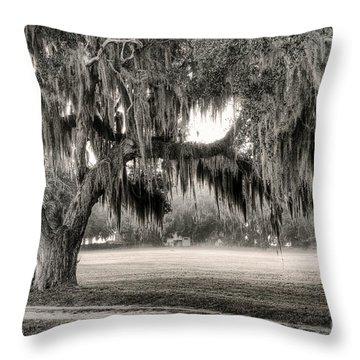 Coosaw - Split Oak Throw Pillow