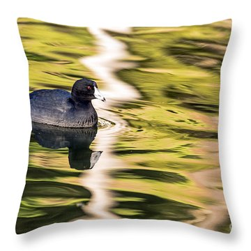Coot Reflected Throw Pillow