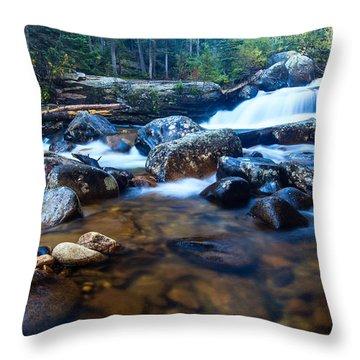 Copeland Falls 3 Throw Pillow