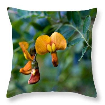 Copper Beauty Colutea Throw Pillow