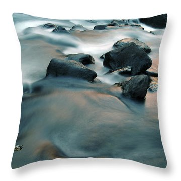 Copper Stream 1 Throw Pillow