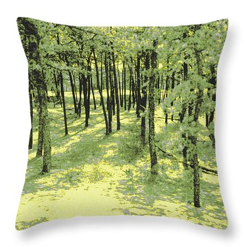 Throw Pillow featuring the photograph Copse Of Trees Sunlight by Tom Wurl