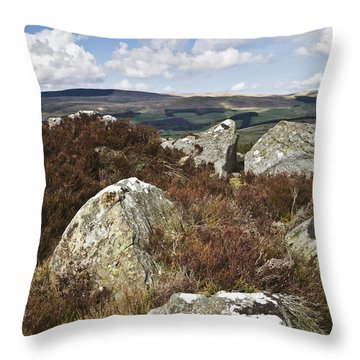 Coquetdale Throw Pillow
