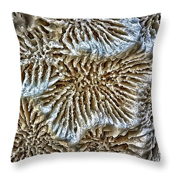 Coral 1 Throw Pillow by Walt Foegelle