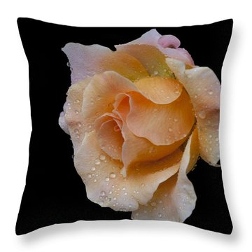 Throw Pillow featuring the photograph Coral Cutie by Doug Norkum