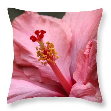 Coral Hibiscus Throw Pillow by Sabrina L Ryan