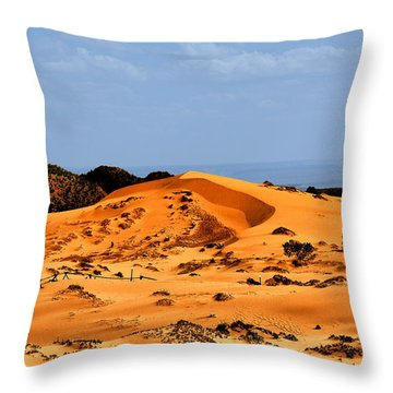 Coral Pink Sand Dunes Utah Throw Pillow by Christine Till