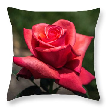 Coral Rose Throw Pillow
