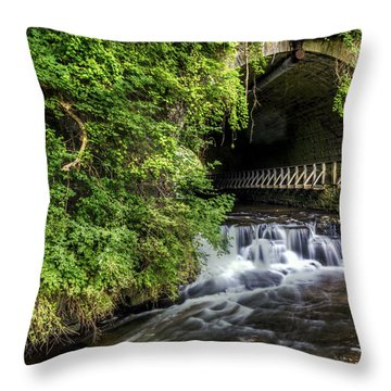 Corbett's Glen Vines- Ny Throw Pillow by Tim Buisman
