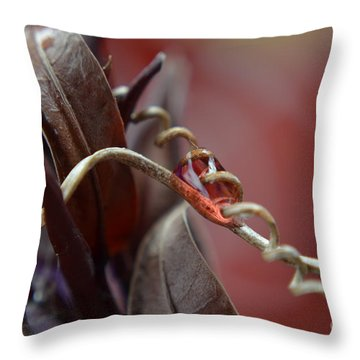 Throw Pillow featuring the photograph Corkscrew by Michelle Meenawong