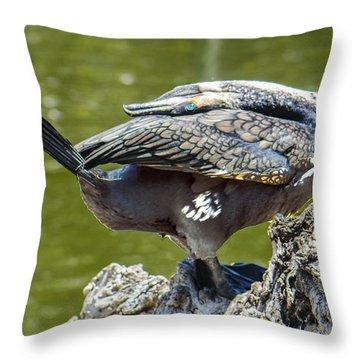 Cormorant Bending His Neck Backward Throw Pillow