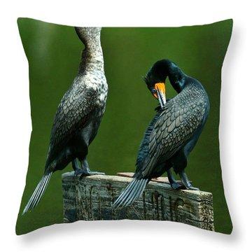 Cormorant Courtship Throw Pillow