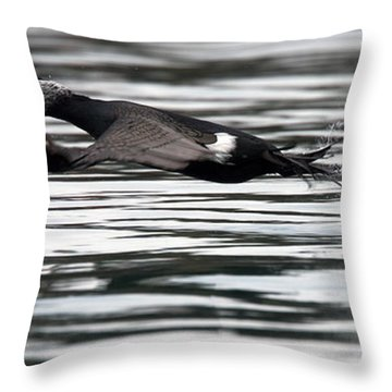Cormorant Taking Off From The Sea Throw Pillow