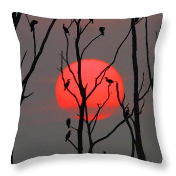 Cormorants At Sunrise Throw Pillow by Roger Becker