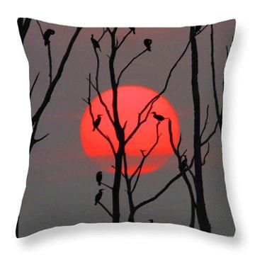 Cormorants At Sunrise Throw Pillow