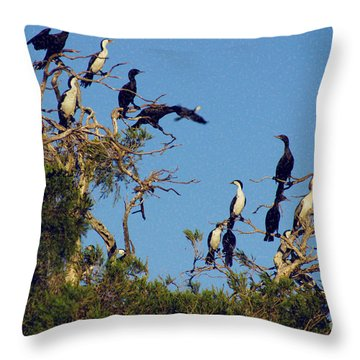 Cormorants Roosting Throw Pillow
