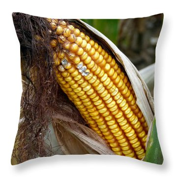 Throw Pillow featuring the photograph Corn Cob Dry by Jeff Lowe