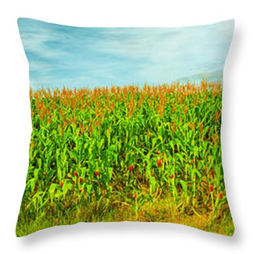 Corn Crop Throw Pillow by MotHaiBaPhoto Prints