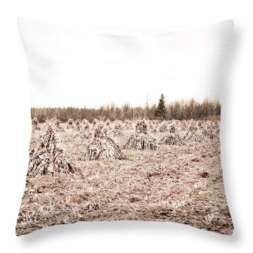 Corn Shocks Throw Pillow by Maggy Marsh