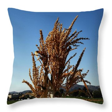 Throw Pillow featuring the photograph Corn Top by Michael Gordon