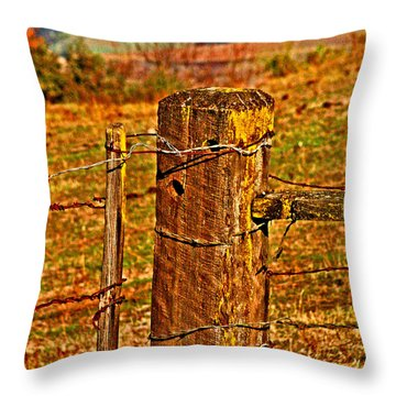Corner Post At Gate Throw Pillow