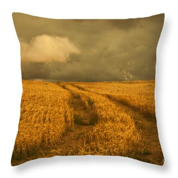 Cornfield Throw Pillow