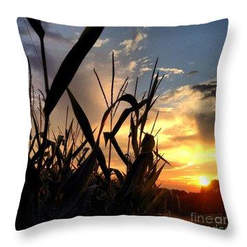 Cornfield Sundown Throw Pillow