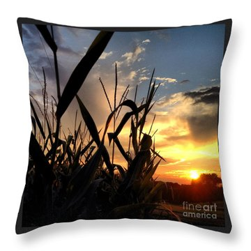 Cornfield Sundown Throw Pillow by Angela Rath