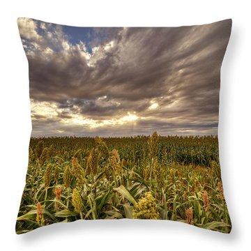 Cornfield Sunset  Throw Pillow by Saija  Lehtonen