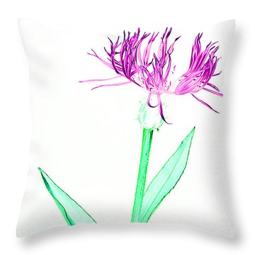 Cornflower No.3 Throw Pillow