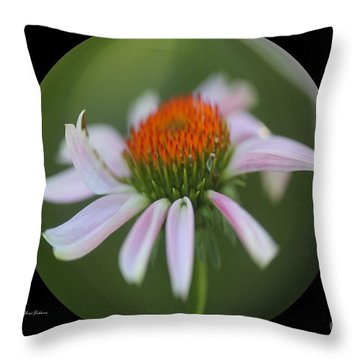 Cornflowers In The Ball Throw Pillow