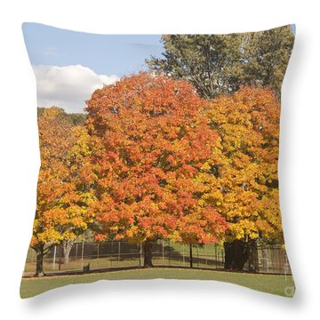 Corning Fall Foliage 1 Throw Pillow